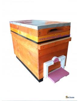 Çift Girişli Ana Arı Üretim  Kovanı