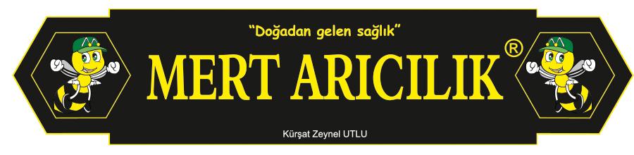 MERT ARICILIK